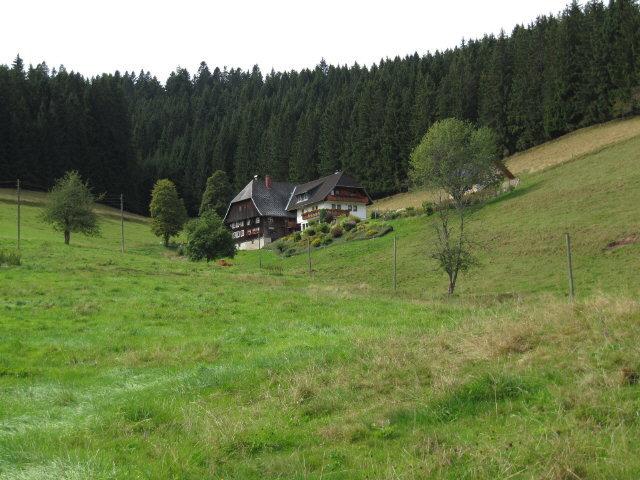 Freiburg Schwarzwald De Furtwangen Ferien Auf Dem