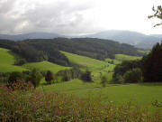 Valley of Rechtenbach, about 10 km south of Freiburg-city